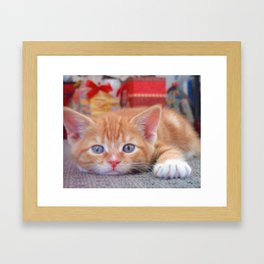 Cleo the Christmas Cat Framed Art Print