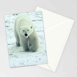 Chilly. Stationery Cards