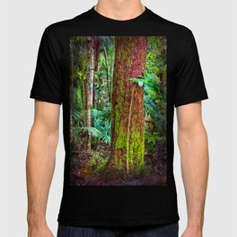 New and old rainforest growth T-shirt