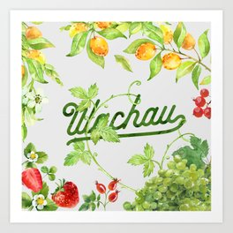 Fruits of the Wachau Art Print