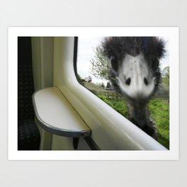 Confrontational Emu Art Print