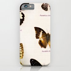Forever Beautiful Butterfly iPhone 6s Slim Case