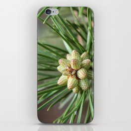Christmas III iPhone Skin