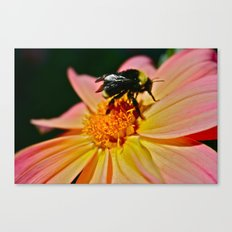 Winged Flower 01 Canvas Print
