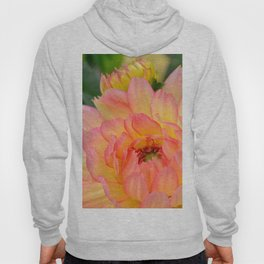 """Coral Tipped"" Dahlia by Teresa Thompson Hoody"