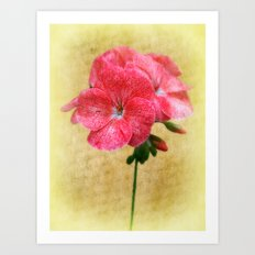 Bloom In Red Art Print