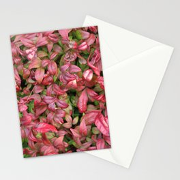 Red & Green Leaves Stationery Cards