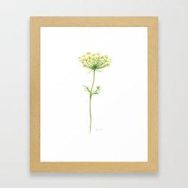 Anise Framed Art Print