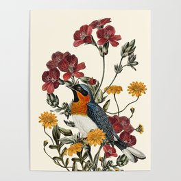 Little Bird and Flowers Poster