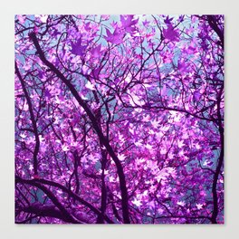 purple tree XXXIII Canvas Print