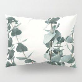 Eucalyptus Leaves Pillow Sham