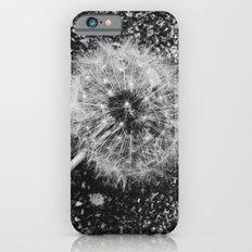 Dandelion in black and white iPhone 6s Slim Case