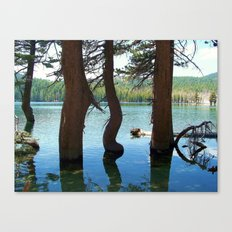 Gentle Bend Canvas Print