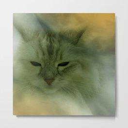 vanilli - the cat Metal Print