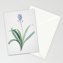 Vintage Spanish Bluebell Illustration Stationery Cards