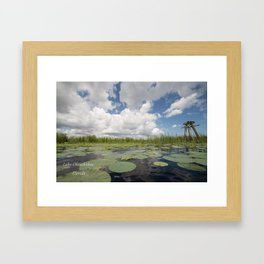From a Frog's Point of View Framed Art Print