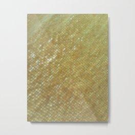 Texturas 005 Metal Print