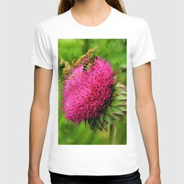 The thistle and a fly T-shirt