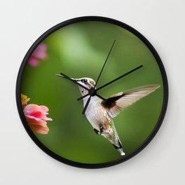 Hummingbird XI Wall Clock