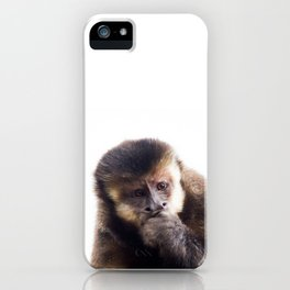 Thinking Capuchin Monkey iPhone Case