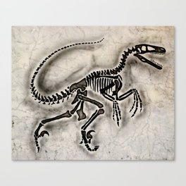 Dino Fossil Canvas Print