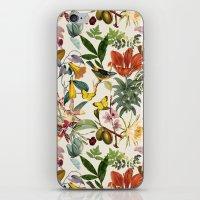 botanical iPhone & iPod Skins featuring Botanical by Bambouchic
