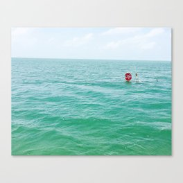 WTF is this? Canvas Print