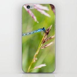 Damselfly's Dinner iPhone Skin