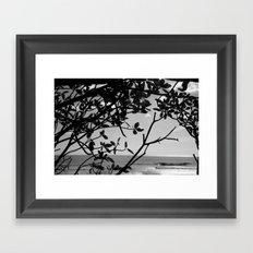 Popoyo Framed Art Print