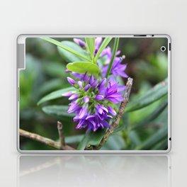 Purple Paradise Laptop & iPad Skin