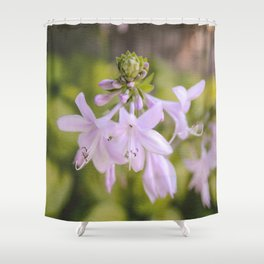 Soft Petals Shower Curtain