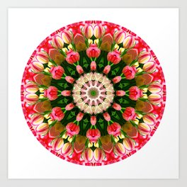 Pink Tulips Mandala Art Print