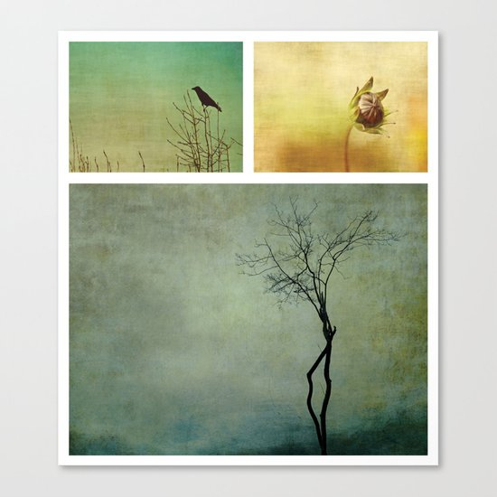 Triptych ~ Nature Canvas Print