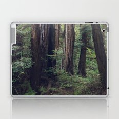 The Redwoods at Muir Woods Laptop & iPad Skin