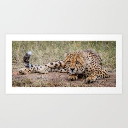 Posing for the picture Art Print