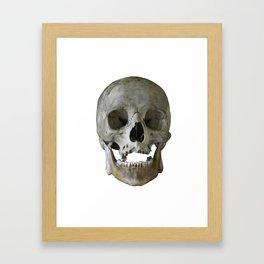 greyskull Framed Art Print