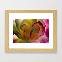 Rose Abstract Framed Art Print