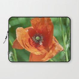 Red poppy flower Laptop Sleeve