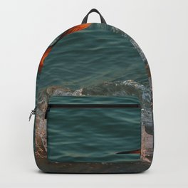 Reddish At Sunset Backpack
