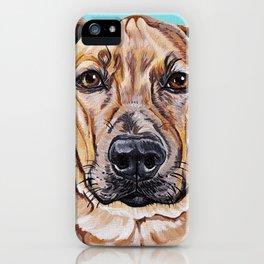 Kovu the Dog's pet portrait iPhone Case