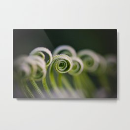Curly Metal Print