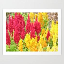 Sept. Garden 045 Art Print