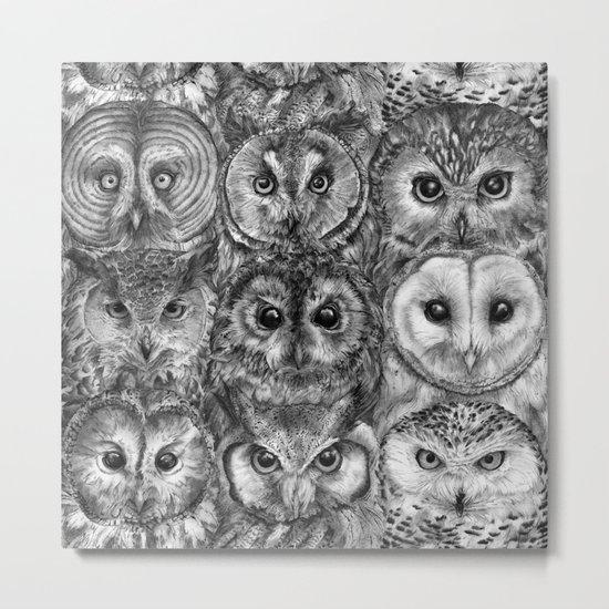 Owl Optics BW Metal Print