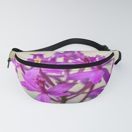Epi Pretty Lady Misumi Orchid Flowers Fanny Pack
