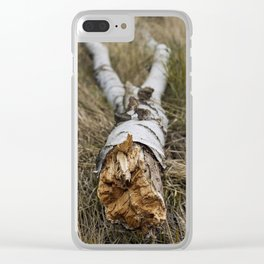 Birch Trunk Clear iPhone Case