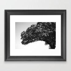 Wis. Framed Art Print