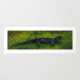 Blue-spotted Salamander Art Print