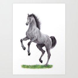 Horse colored pencil illustration Art Print