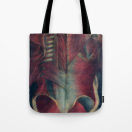 Anatomy art SPINE TRAPEZE MUSCLE dark art, gothic home decor, gothic decor, gothic wall decor, medic Tote Bag