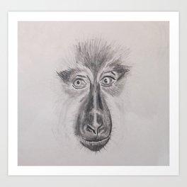 Macaco Sileno Art Print